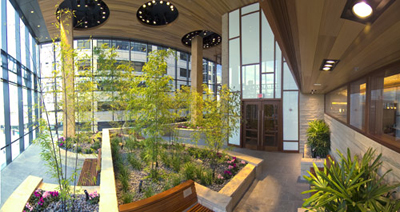 The healing garden in the Yawkey Center for Cancer Care