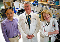 Dana-Farber doctors Wang, Iglehart, and Matulonis (left to right) have identified three subtypes of ovarian cancer.