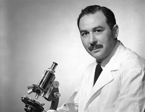 Sidney Farber at microscope