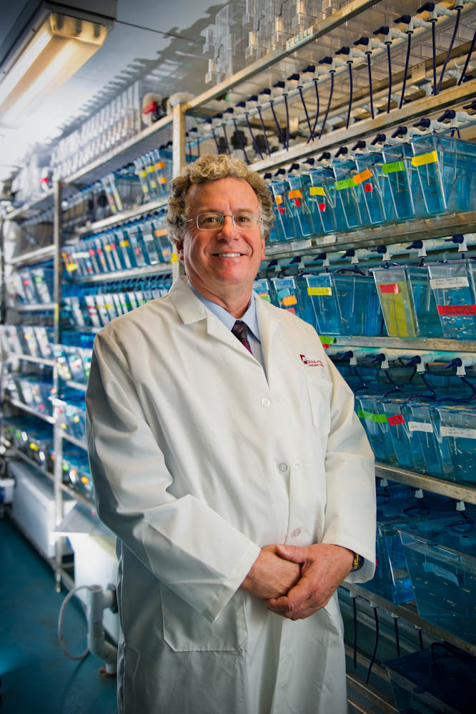 A. Thomas Look, MD, in the zebra fish lab in the basement of the Jimmy Fund Building at Dana-Farber.