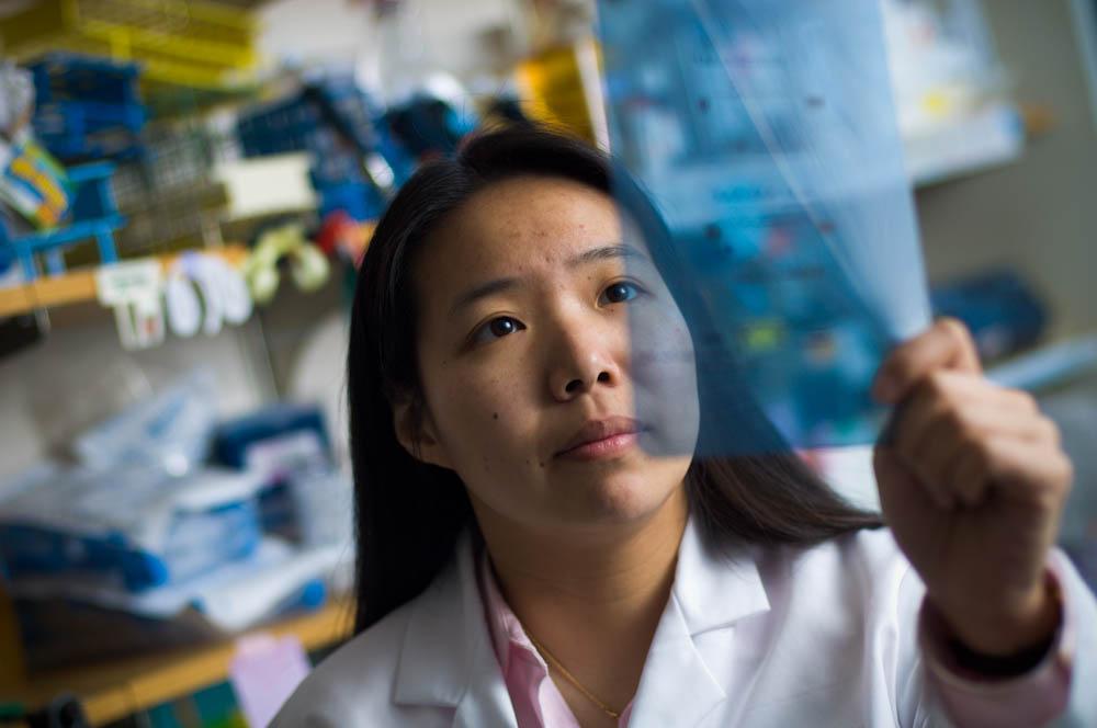 Joyce Liu, MD