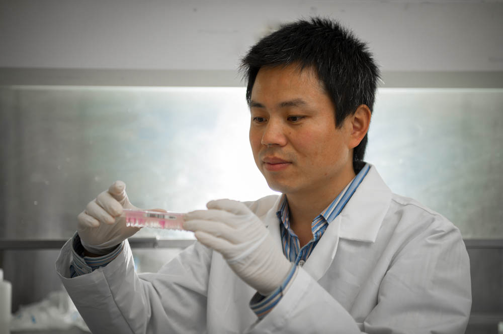 Linfeng Chen, PhD who led a research study on a type of B-cell lymphoma.