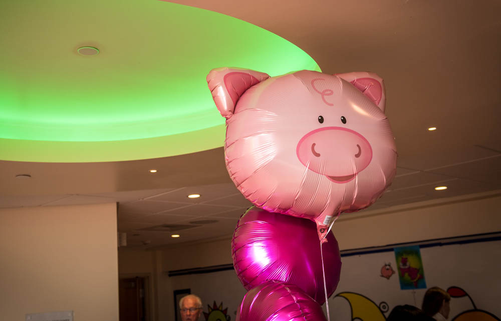 Pig decorations fill the Jimmy Fund Clinic for Pig Day.
