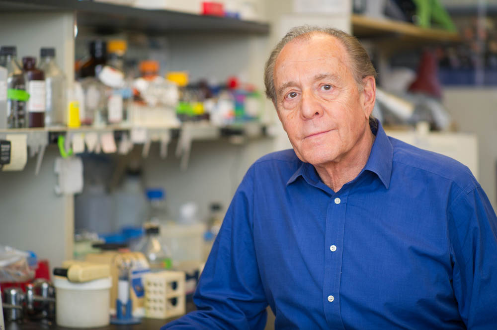 viruses show new promise as cancer treatment