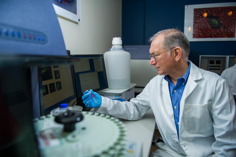 immunotherapy, Gordon Freeman PhD