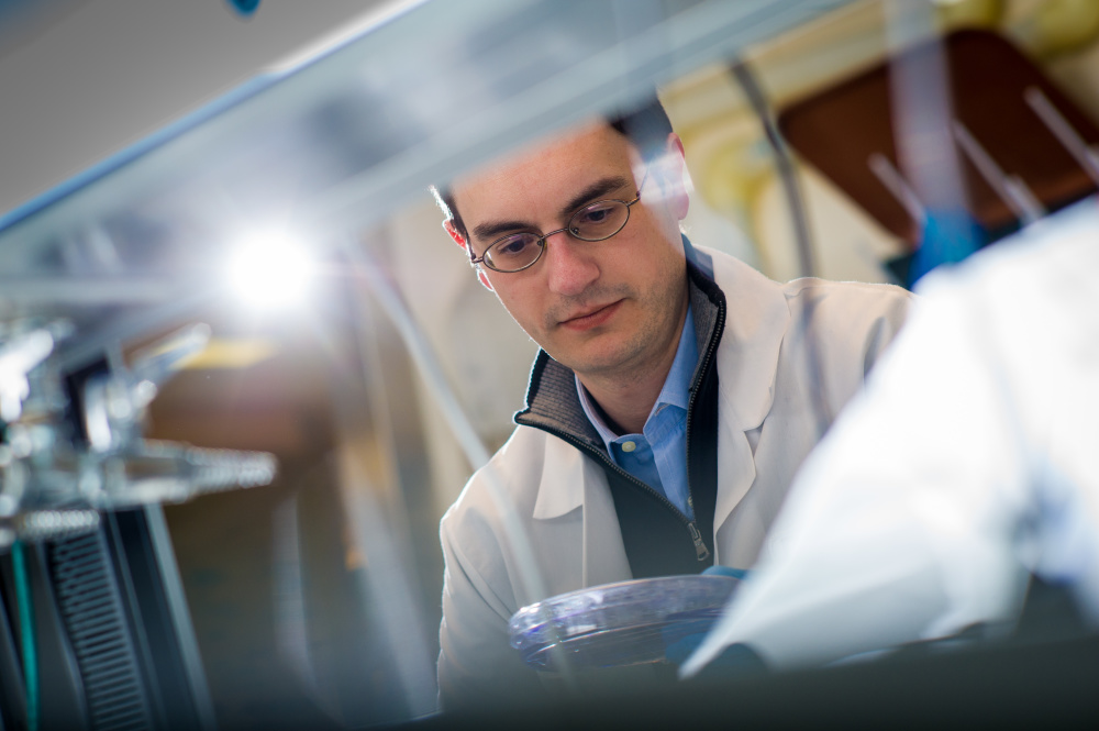 Panos Konstantinopoulos, MD, PhD, works on endometrial cancer research at Dana-Farber.