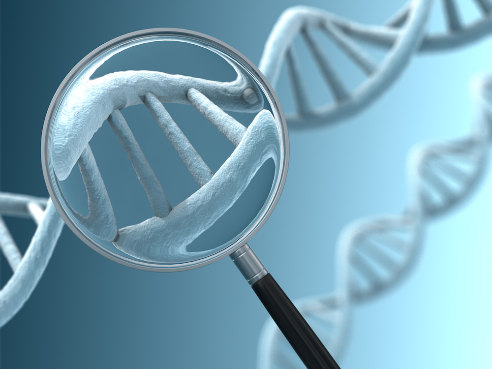 Gene therapy alters the genetic instructions within an individual's cells. A gene is a sequence of DNA — pictured above.