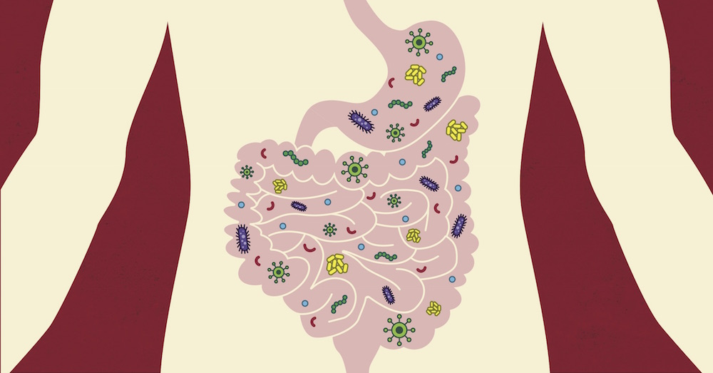 An illustration of gut microbes.