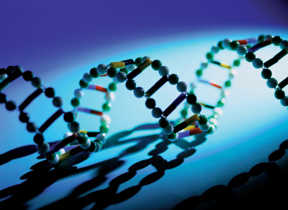 DNA analysis can identify BRCA mutations.